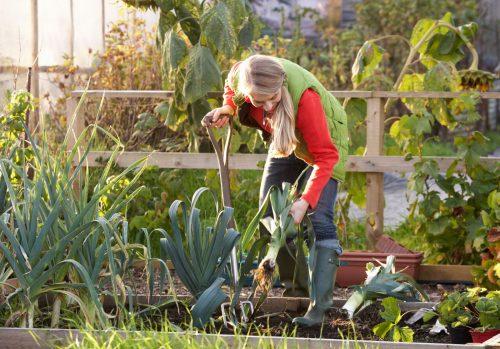 Une femme qui travaille dans son jardin